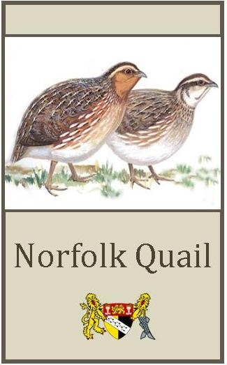 Norfolk Quail logo shopping