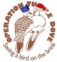 Festive OTD logo CFE