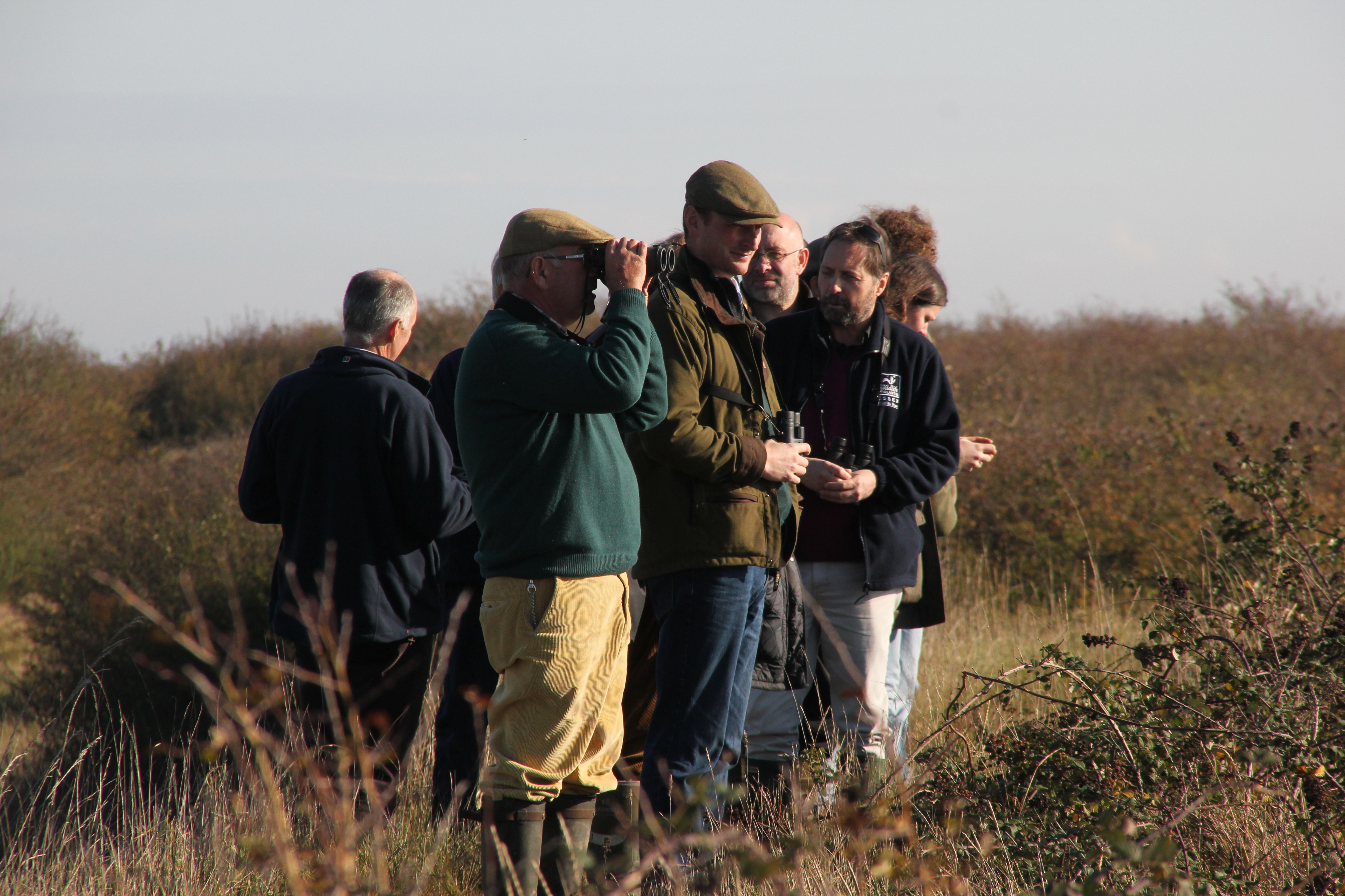 The launch of a turtle dove friendly zone
