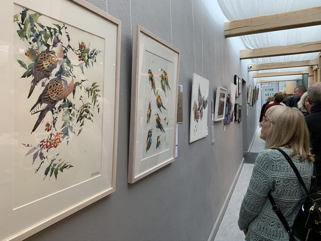 Image: Saving Turtle Doves exhibition at the 'Inspired by…' gallery in Danby, North Yorkshire. Credit: Jos Ashpole.