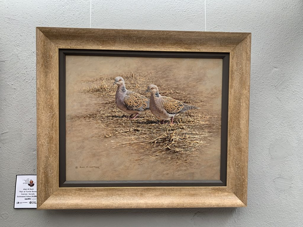 Image: A 'Pair of Turtle Doves' by Alan M Hunt. Acrylic on canvas. Credit: Jos Ashpole.