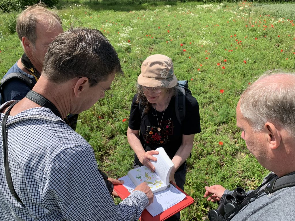 Photo: Identifying different plant species in the sown plots. Credit: Jos Ashpole